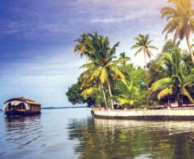 coconut-lagoons4