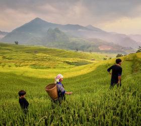 tip-to-tip-in-vietnam3